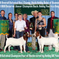 Bill and Sue Hobby and others with two champion goats